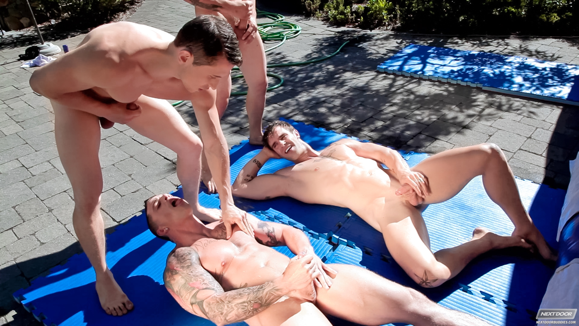 image The taylor chandler sex tape intersex